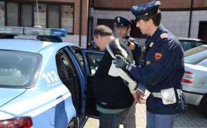 arresto-1