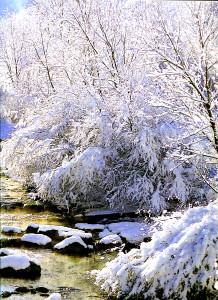 Valnerina, fiume Nera