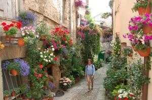 Flowers adorn the narrow cobblestone streets, Spello, Italy