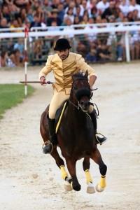 Luca Innocenzi, cavaliere del rione Cassero, vincitore della Quintana di solidartietà 2019