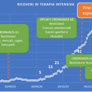 Ricoveri in terapia intensiva